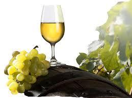 Struguri De Vin Albi