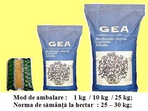 Lucernă - Gea tratată