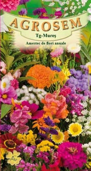 Amestec de flori anuale