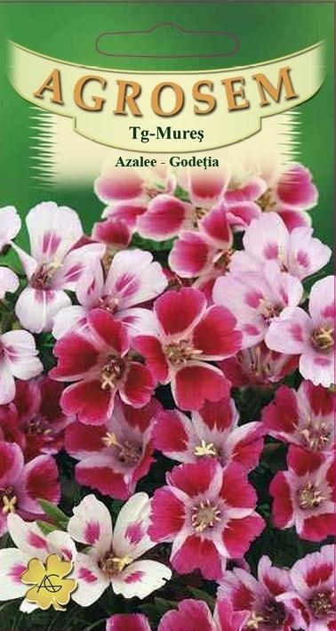 Azalee-Godeția