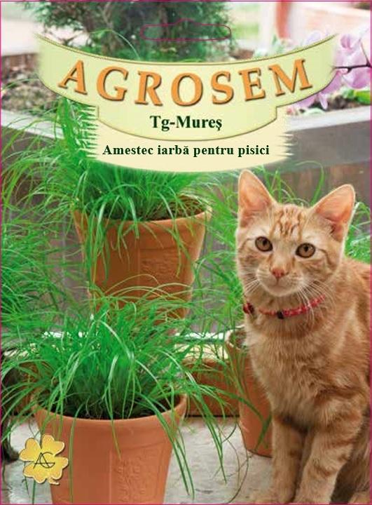 Amestec iarbă pentru pisici
