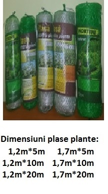 Plase plante