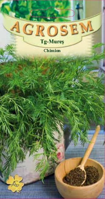 Chimion