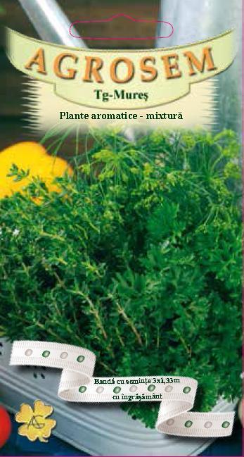 Plante aromatice-mixtură