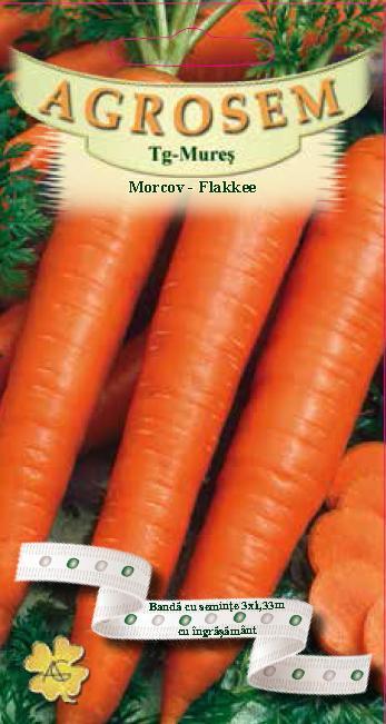 Morcov - Flakkee